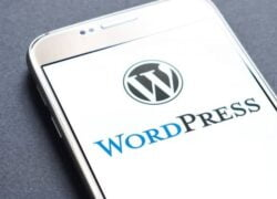 How to Set Typing Settings Correctly in Wordpress (Example)