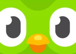 How to Update the Duolingo App to Increase Your Number of Language Courses?  (Example)