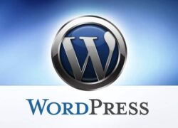 How to Add or Insert Spaces Between Lines or Paragraphs in WordPress (Example)