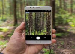 Solution: 'My Cell Phone's Camera Looks Blurred When Taking Photos and Doesn't Focus Well'