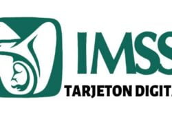 How to Download or Download my IMSS Retiree Payment Card? - Solution (Example)