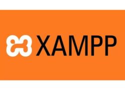 How to Install WordPress on a Local Server with Xampp step by step