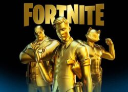 What's in the Fortnite Store?  Weapons, Objects and Others