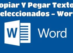 How to Copy and Paste Multiple Selected Texts at One Time in Word