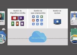 How to Download and Install Microsoft Intune Client Software on Windows?  (Example)