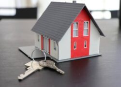 What does the Lease Insurance Policy cover in the Rent or Rental of a Home for Individuals?